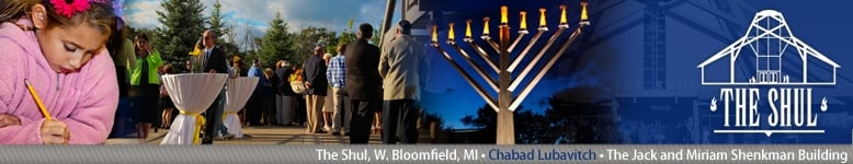 The Shul - West Bloomfield, MI - Celebrating Judaism as a Family... Jewish Holidays, Shabbat, Education, Programming...